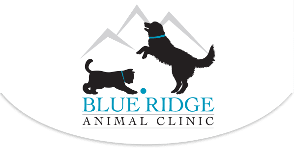 Blue Ridge Animal Clinic